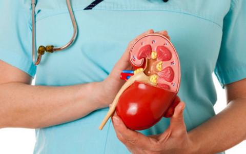 Bagaimana merawat ginjal agar tetap sehat
